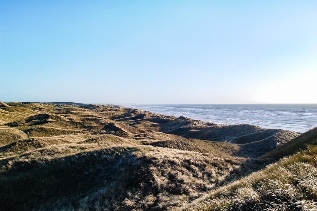 Dünenlandschaft Tornby