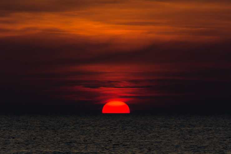 Rote Sonne - Nr. Lyngby - September 2014
