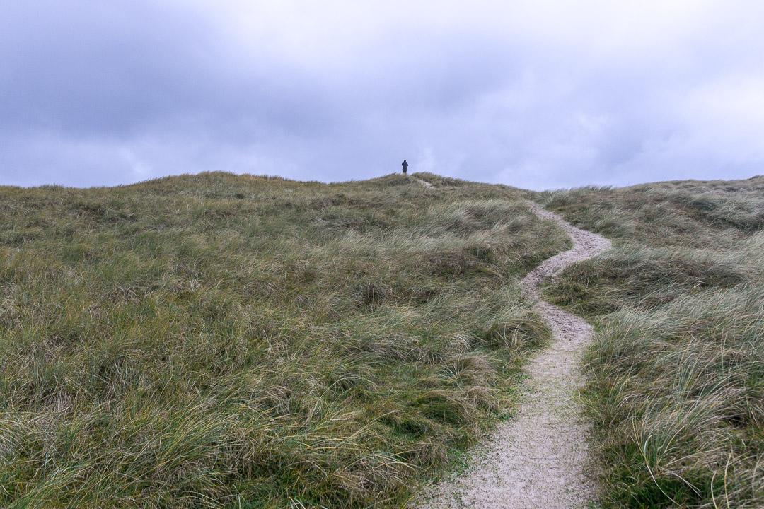 Vejlby Klit der Weg zum Strand