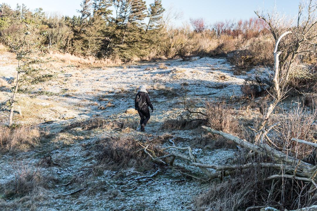 Wanderung durch Skallerup-Klit