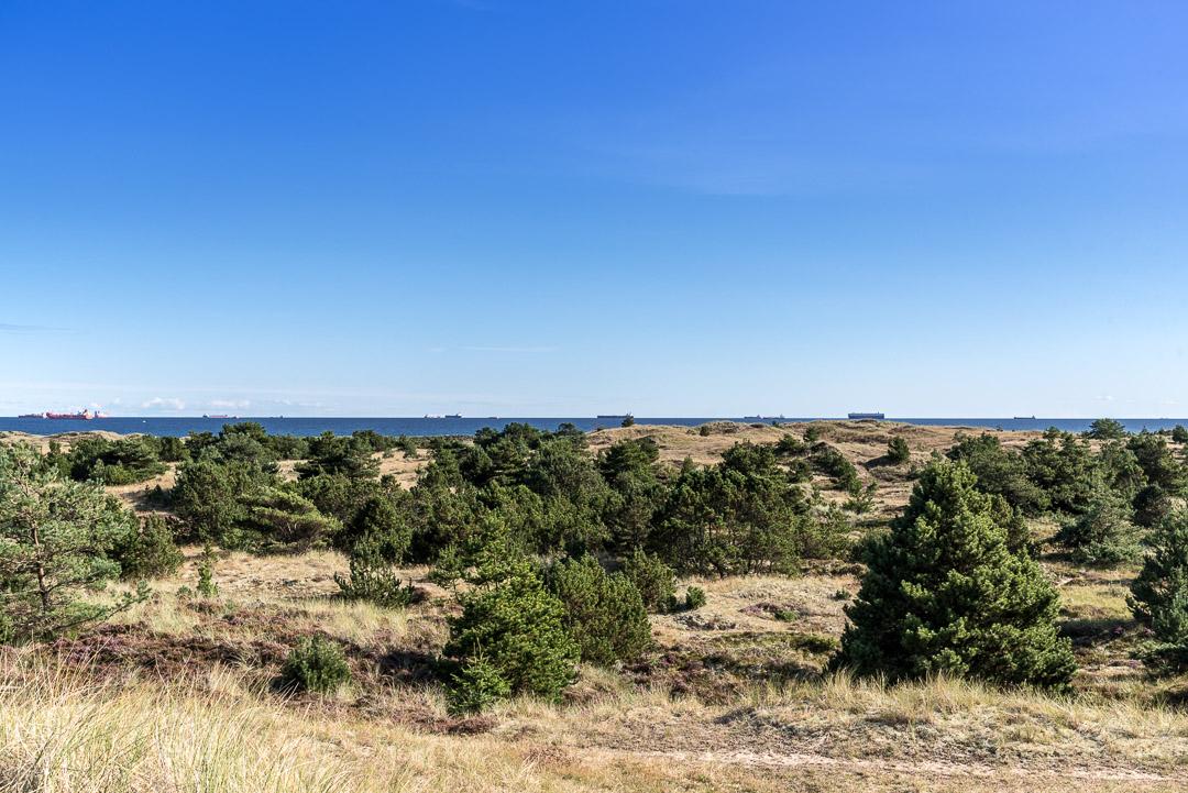 Aussicht von der Düne auf die Ostsee in Skagen