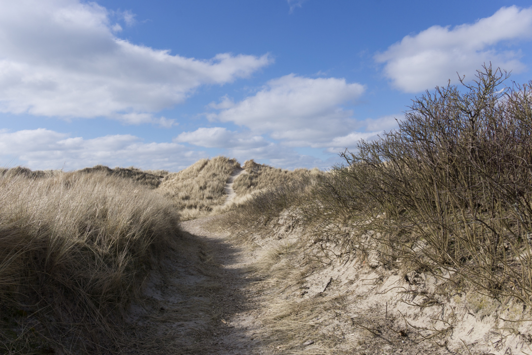 250 Meter zum Rindby Strand / Ferienhaus Fanø Slunden 9