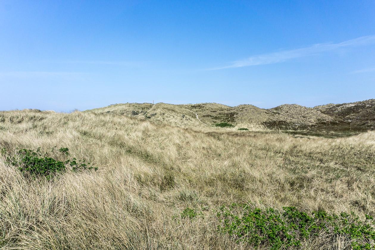 Zauberhafte Dünenlandschaft bei Vangsa