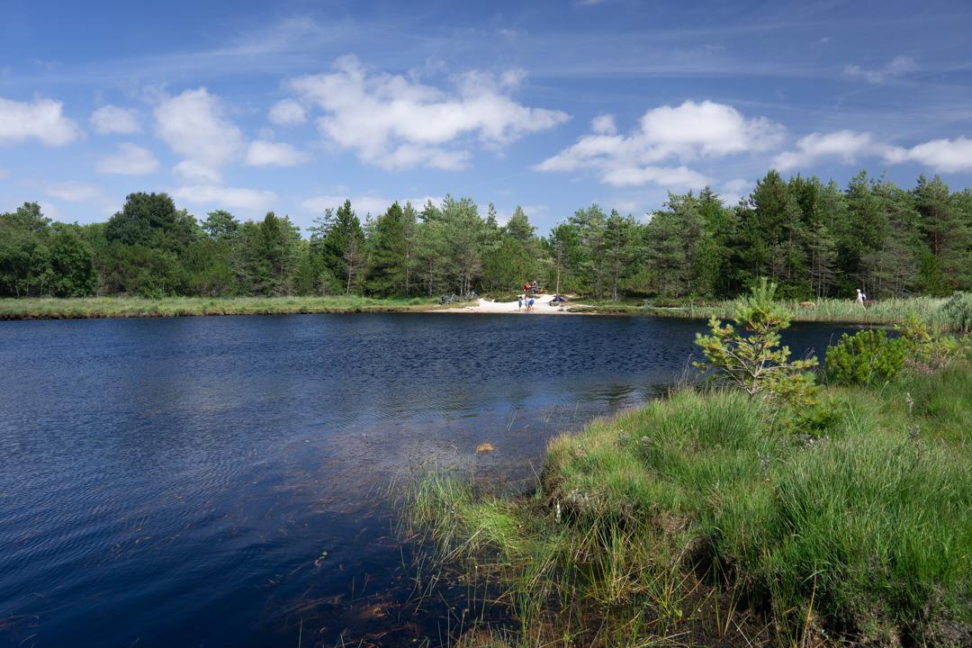 Kleiner See in der Kirkeby Plantage