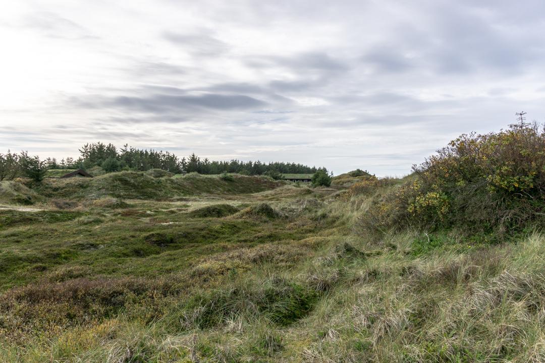 Dünenlandschaft hinterm Haus