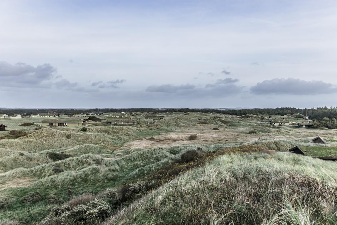 Kaum zu sehen, die grünen Häuser mit den bewachsenen Dächern, inmitten der Dünen.