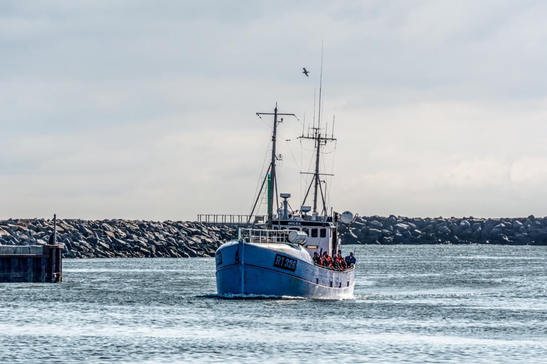 Hafenrundfahrt mit der MS Solea